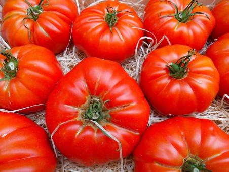Tomates marmande bio