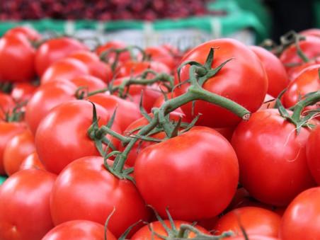 Tomates grappe bio